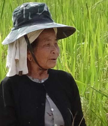 Voyage Birmanie, Ethnies de l'Etat Shan