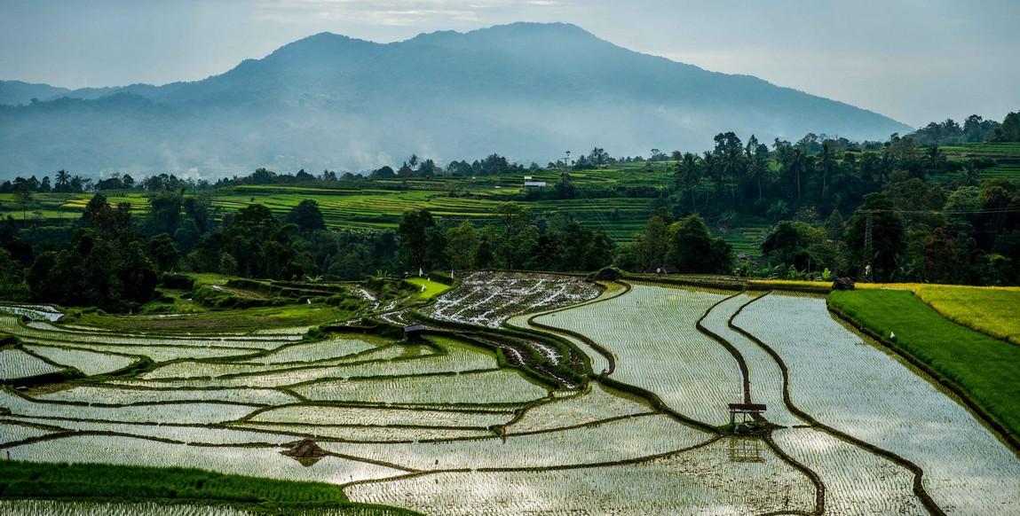 """Résultat de recherche d'images pour """"paysage de sumatra"""""""