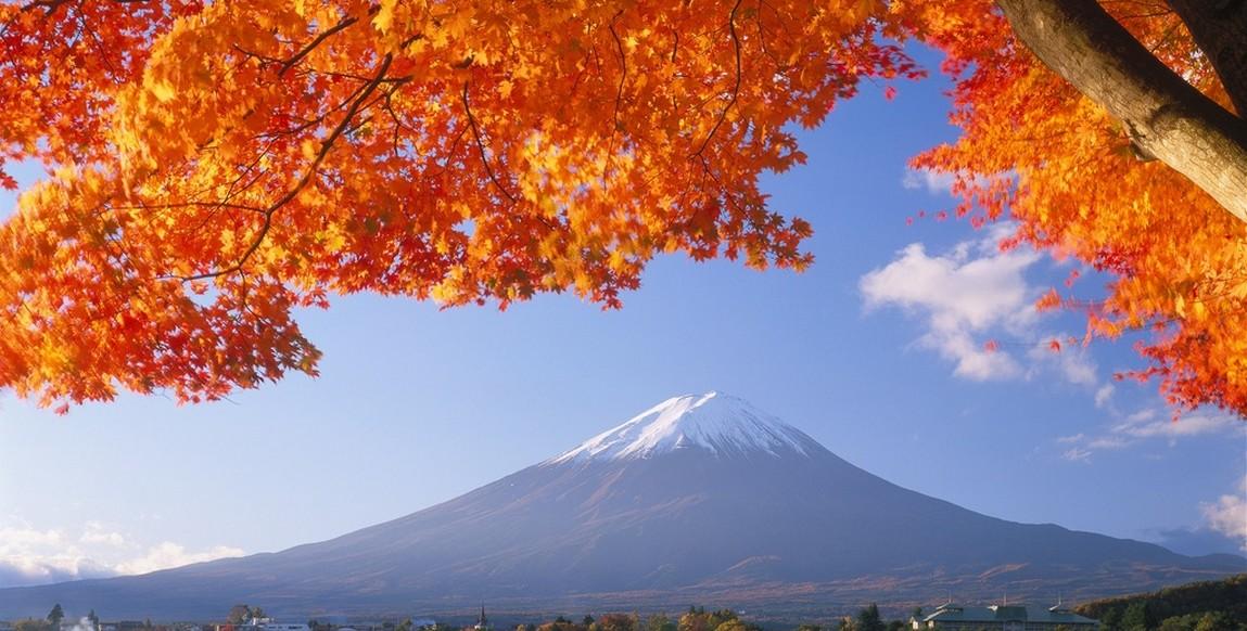 voyage japon  de tokyo  u00e0 kyoto  circuit 11 jours
